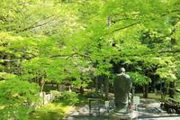 今熊野観音寺の写真・動画_image_189999
