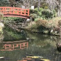 打吹公園の写真・動画_image_193354