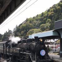 寸又峡温泉の写真・動画_image_193689