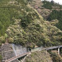 寸又峡温泉の写真・動画_image_193690