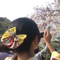 和装小袖の写真・動画_image_195643