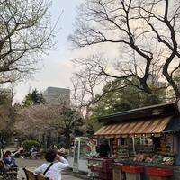 日比谷公園の写真・動画_image_196275