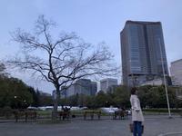 日比谷公園の写真・動画_image_196276