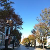 富山城の写真・動画_image_197784