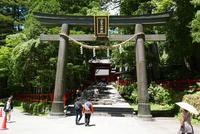 日光二荒山神社の写真・動画_image_199486