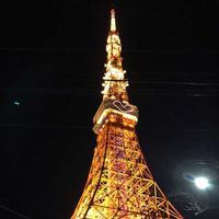 月下の写真・動画_image_201104