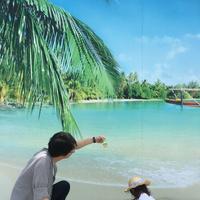 タチヒビーチの写真・動画_image_201231