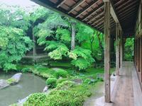 蓮華寺の写真・動画_image_202127