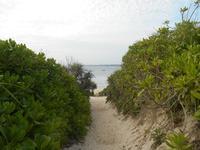 砂山ビーチの写真・動画_image_202317
