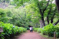 東勝寺宗吾霊堂の写真・動画_image_202400