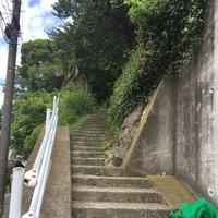 山の上ベーカリーの写真・動画_image_202555