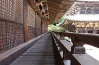 書写山圓教寺の写真・動画_image_202579