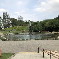 世田谷公園の写真・動画_image_203948