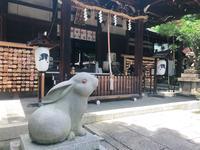 岡崎神社の写真・動画_image_207322