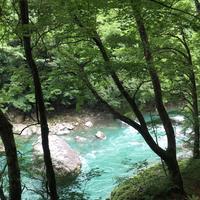 抱返り渓谷の写真・動画_image_209358