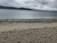 ヤドリ浜自然海水浴場の写真・動画_image_212078