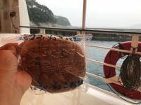 浄土ヶ浜の写真・動画_image_213442