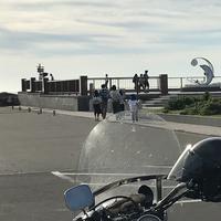 日の出岬の写真・動画_image_213924