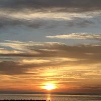 日の出岬の写真・動画_image_213946