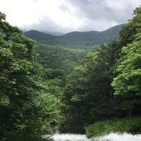 湯滝の写真・動画_image_215373