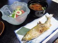 魚末の写真・動画_image_216990