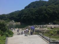 長瀞岩畳の写真・動画_image_217754