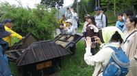 かやぶきの里北集落の写真・動画_image_221112