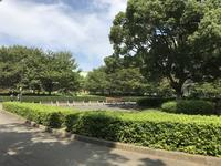 総持寺の写真・動画_image_222157