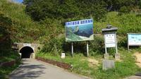 島武意海岸の写真・動画_image_222340