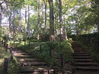 有栖川宮記念公園の写真・動画_image_223114