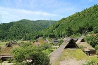 鎌倉神社の写真・動画_image_224445