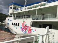 泊港の写真・動画_image_225260
