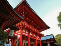 近江神宮の写真・動画_image_228882
