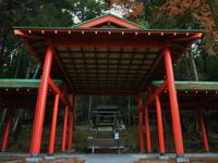近江神宮の写真・動画_image_228883