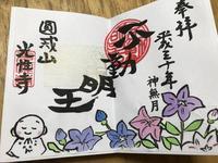 光性寺の写真・動画_image_229959