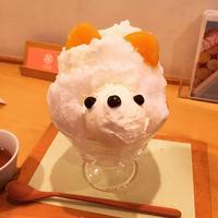 【閉店】ジャパニーズアイス 櫻花(JAPANESE ICE OUCA) の写真・動画_image_232733