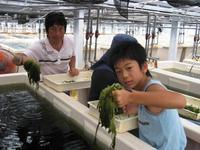 久米島海洋深層水開発(株)の写真・動画_image_235651