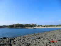 番所鼻自然公園の写真・動画_image_235802
