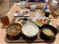 箱根・芦ノ湖 はなをりの写真・動画_image_237849