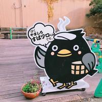 はづちを楽堂の写真・動画_image_238922