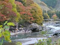 御岳渓谷の写真・動画_image_238939