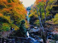 神庭の滝の写真・動画_image_239579