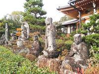 蓮華寺の写真・動画_image_241251