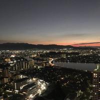 福岡タワーの写真・動画_image_241927