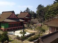 日御碕神社の写真・動画_image_241985