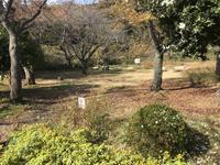 県立 三ツ池公園の写真・動画_image_242150