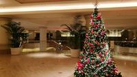 ヨコハマ グランド インターコンチネンタルホテルの写真・動画_image_243619