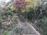 神奈川県立金沢文庫の写真・動画_image_244698