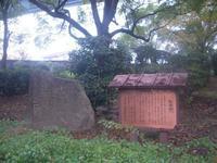 天保山公園の写真・動画_image_24519