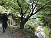 伊万里大川内山の写真・動画_image_246285